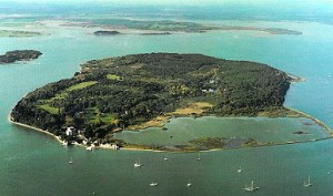 Brownsea Swim